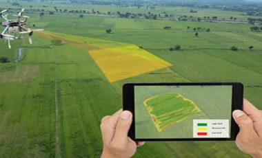 Drones are Revolutionizing the Future of Agriculture & Farming